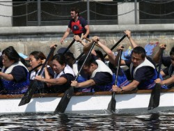 APN dragon boat racing team